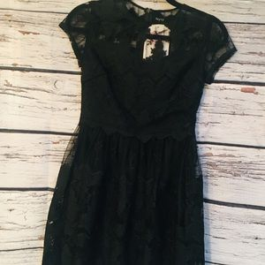NWT Verty LBD. Size Small Dress. Lace Detail.